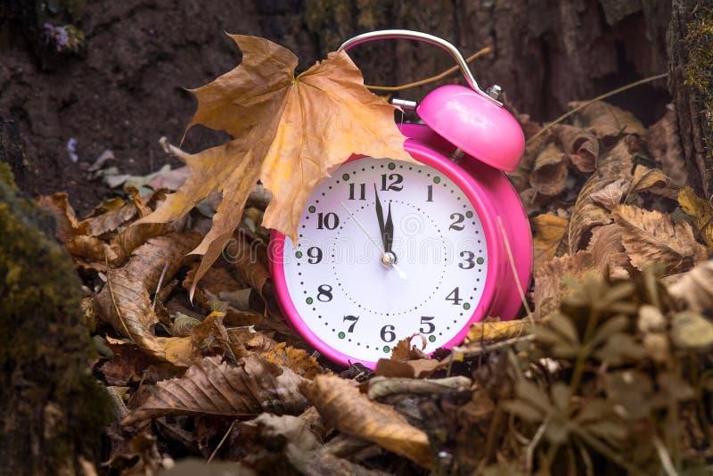秋天时间 在干燥秋天leaves_的时钟 免版税库存图片