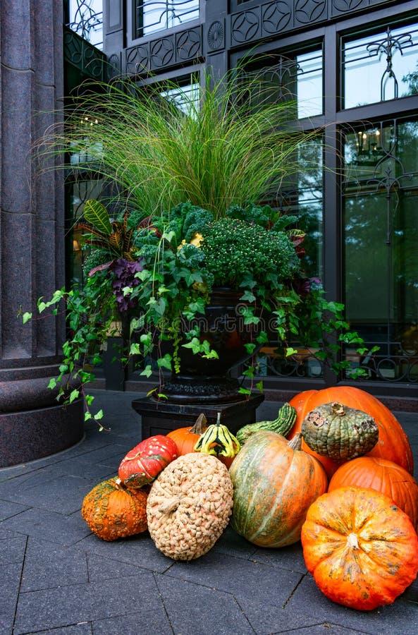 秋天显示用南瓜和金瓜在城市大厦外面 库存照片