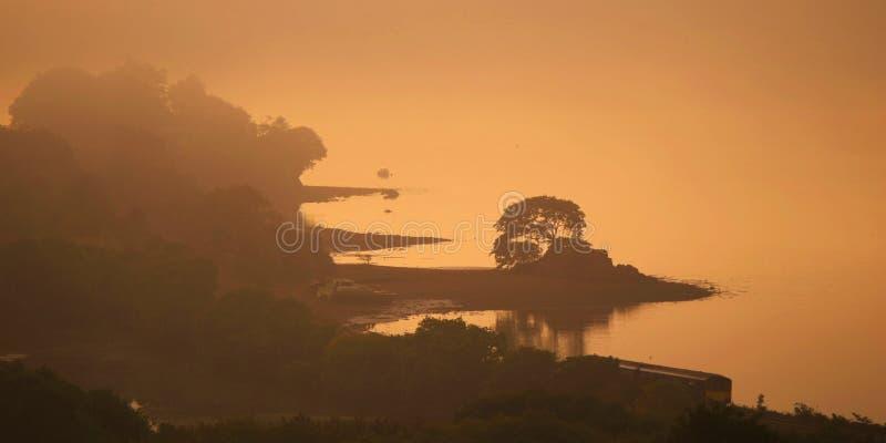 秋天有薄雾的早晨 免版税图库摄影