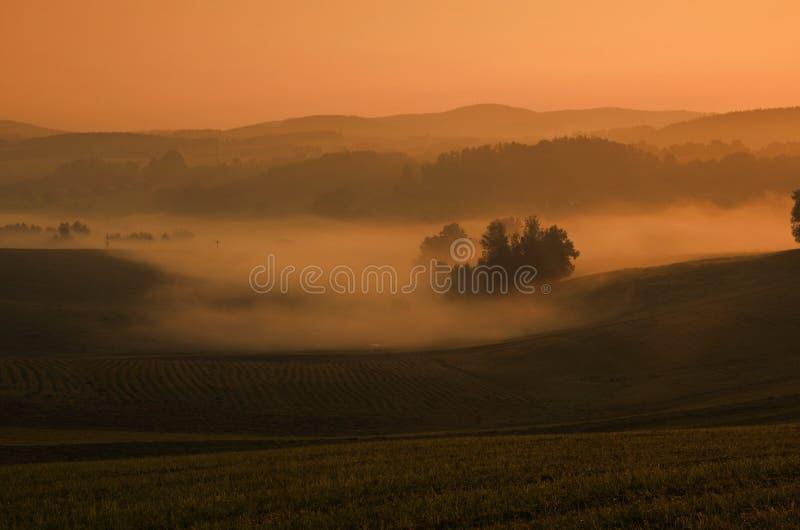 秋天有雾的横向 库存照片