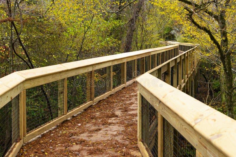 秋天木桥在国家公园,美国佛罗里达 库存照片