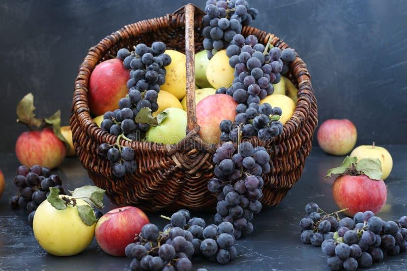 秋天构成用位于黑暗的背景和葡萄的苹果 库存照片