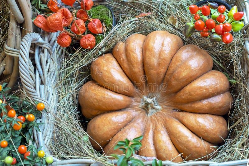 秋天构成用在秸杆的南瓜在一个柳条筐 免版税库存照片
