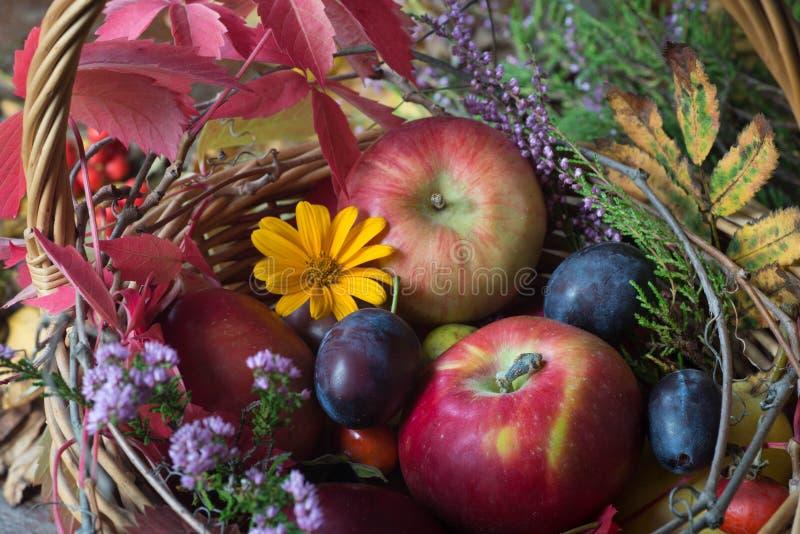 秋天果子、花和叶子在篮子静物画 免版税图库摄影