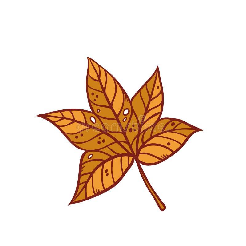 秋天枫叶9月或10月褐色落叶叶子 传染媒介概述例证被隔绝的剪影五颜六色 皇族释放例证