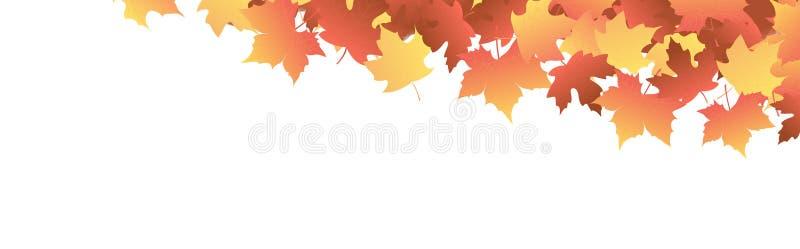 秋天标头离开槭树 皇族释放例证