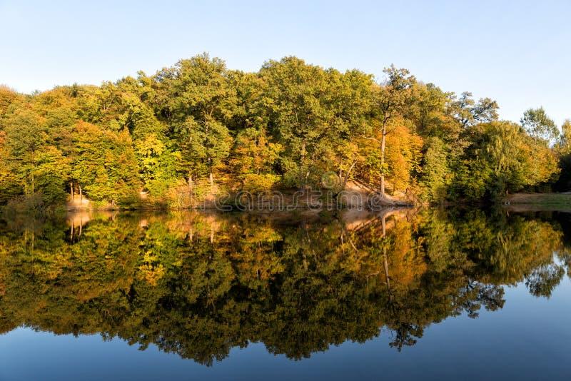 秋天树在湖被反射 库存图片