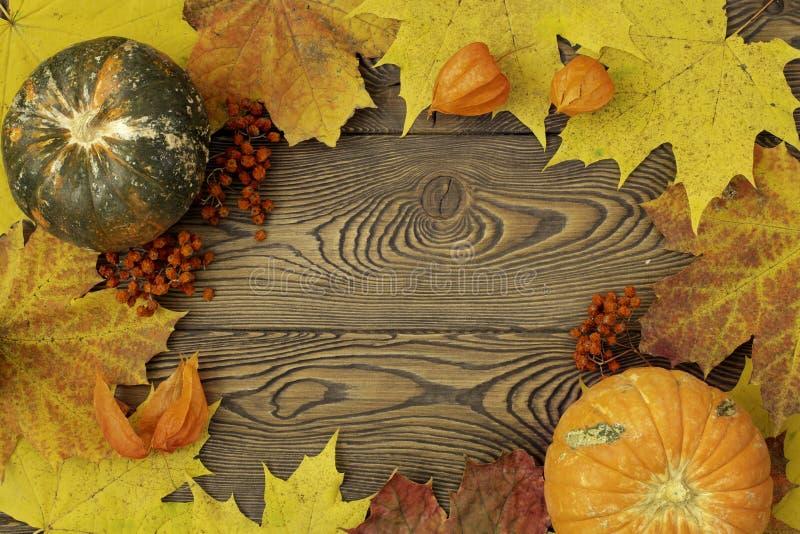 秋天框架上色枫叶和黄色和绿色南瓜在一张木桌上安置文本或对象 免版税库存照片