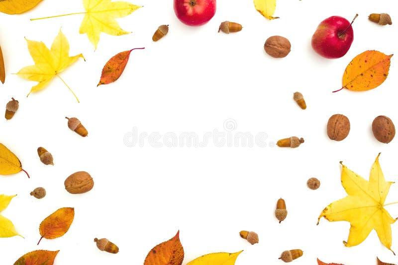 秋天框架构成 秋天叶子,苹果,在白色背景的杉木锥体 秋天,感恩概念 平的位置,顶视图 图库摄影