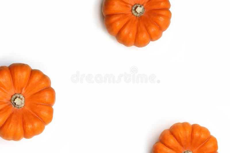 秋天框架被隔绝的由橙色南瓜制成在白色背景 秋天、万圣夜和感恩概念 称呼 免版税库存照片