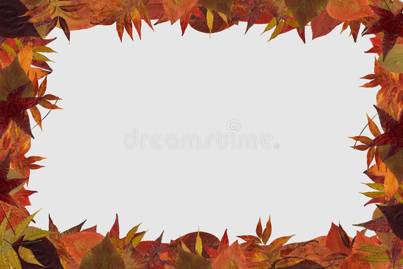 秋天框架 图库摄影