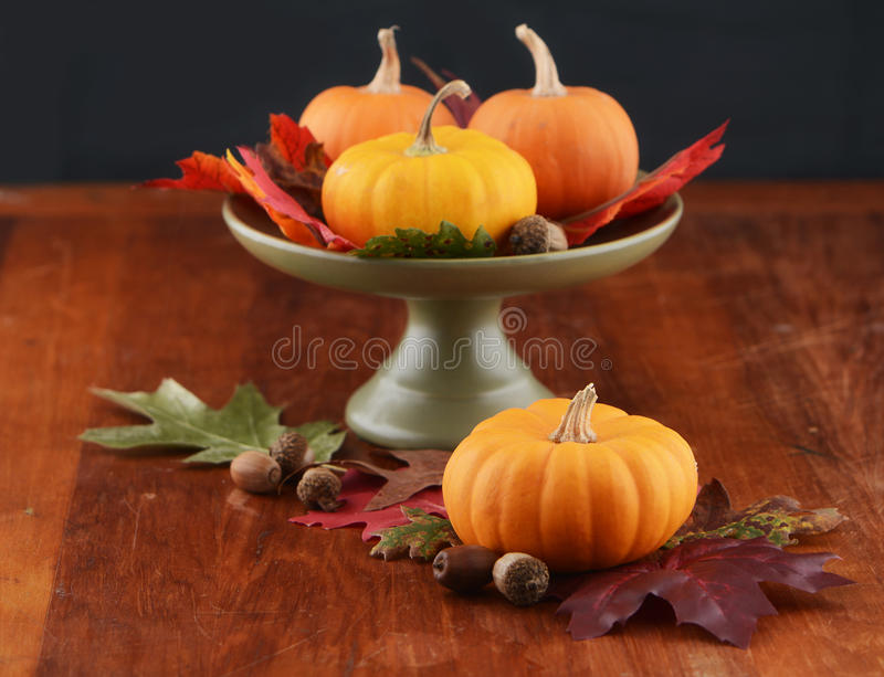 秋天桌焦点 库存照片