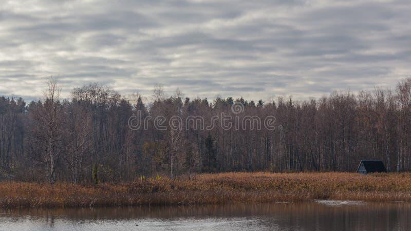 秋天森林和木小屋在湖的银行 免版税库存图片