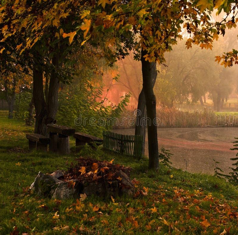 秋天森林和湖 免版税库存图片