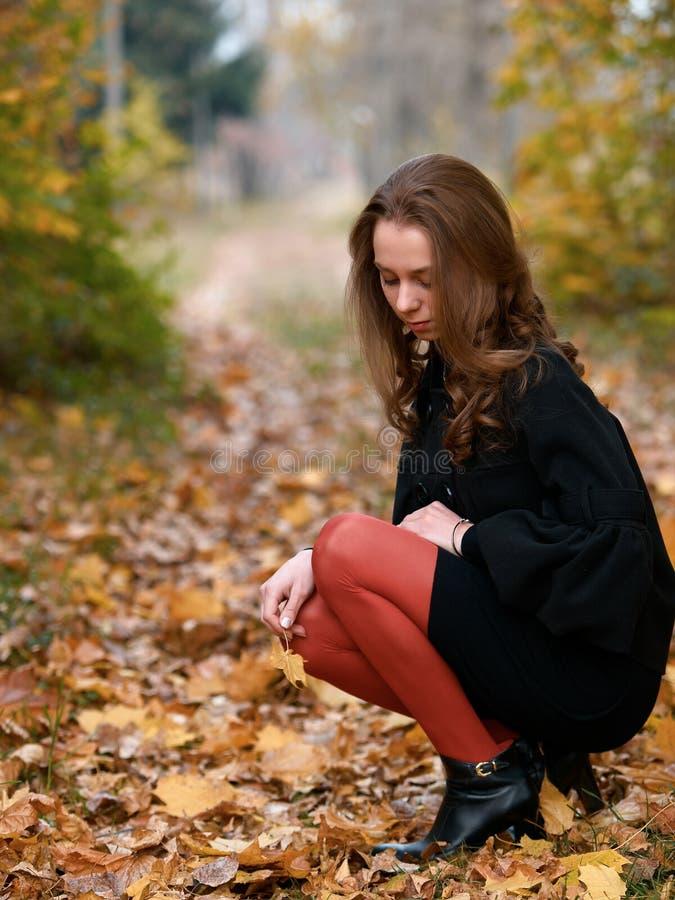 秋天森林女孩蹲年轻人 免版税库存照片
