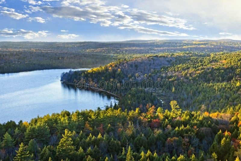 秋天森林湖顶视图 库存图片