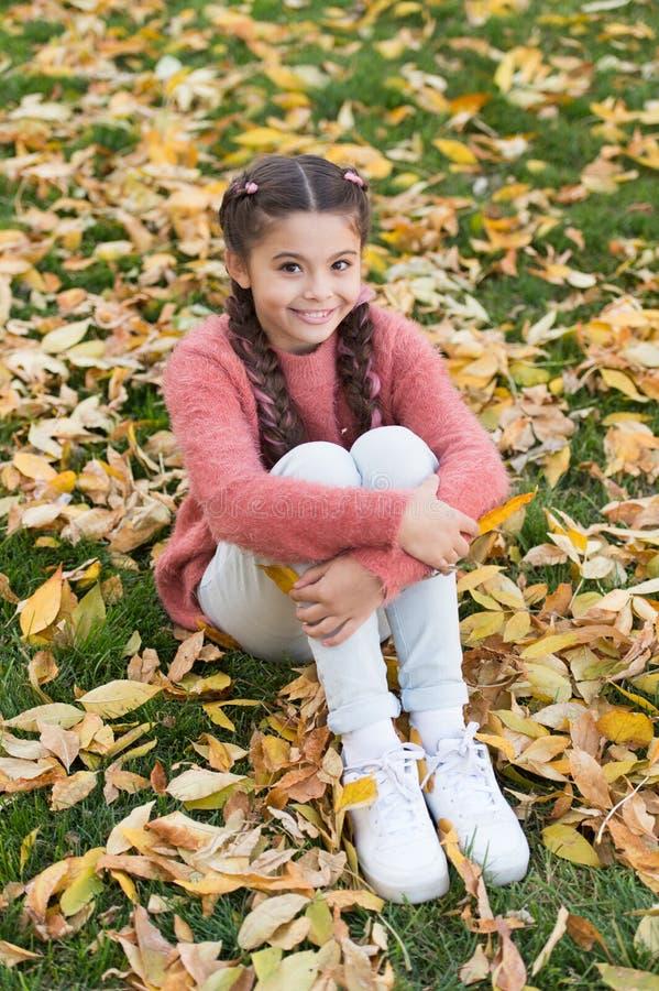 秋天森林秋叶和自然的愉快的小女孩 愉快的童年 学校时间 有秋天的小孩子 库存图片
