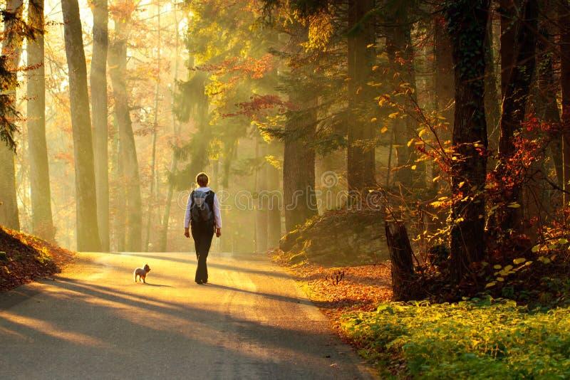 秋天森林走的妇女 免版税库存图片
