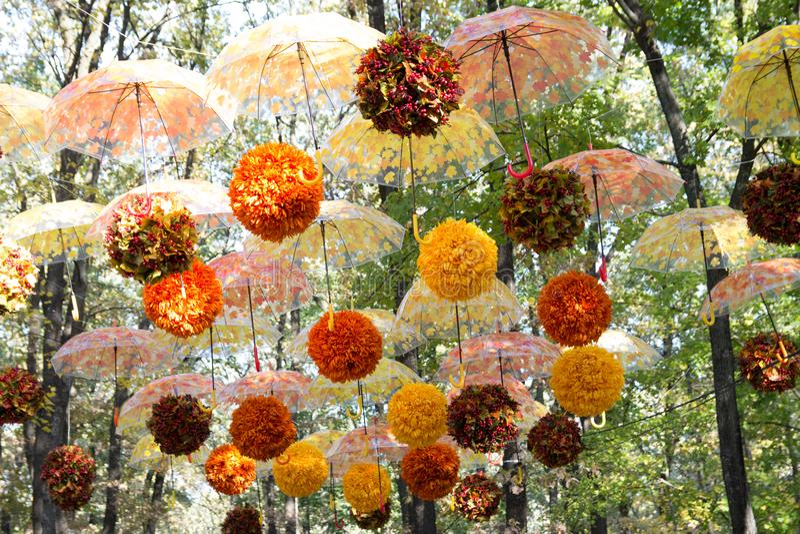 秋天森林,公园,街道,有黄色和橙色叶子吊的许多伞 盘旋反对天空和秋天叶子 免版税库存照片