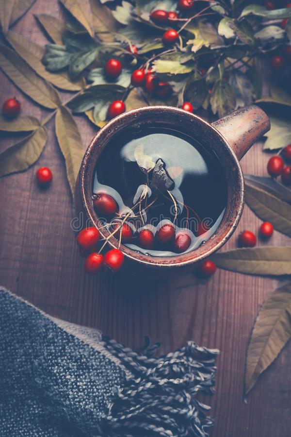 秋天概念查出的白色 杯清凉茶用用在黑暗的土气木桌背景的叶子装饰的红色秋天莓果 免版税库存图片