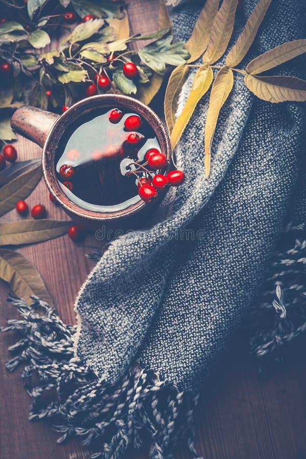 秋天概念查出的白色 灰色围巾和杯子秋天用秋天装饰的莓果茶在黑暗的土气木桌背景离开 免版税库存图片