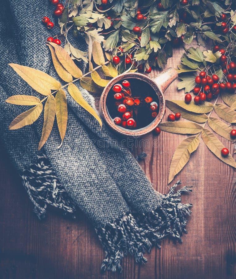 秋天概念查出的白色 用秋天和茶装饰的围巾在黑暗的土气木桌背景离开 库存照片