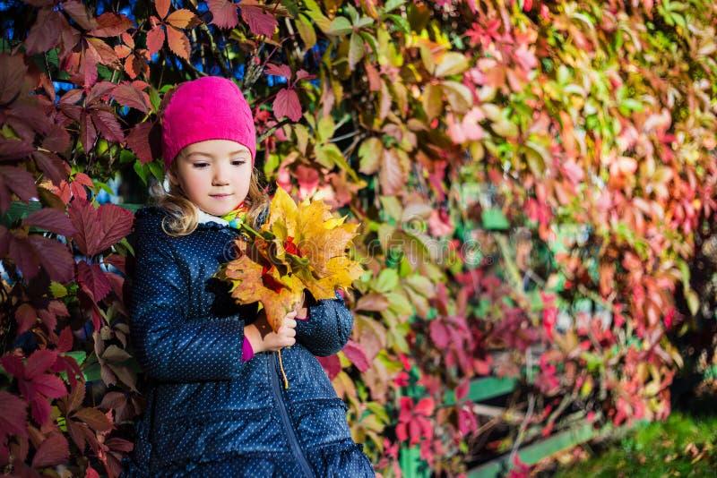 秋天概念-有黄色的作白日梦的小女孩在p离开 免版税库存照片