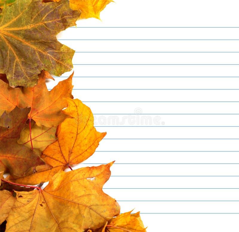 秋天槭树叶子和笔记本纸 免版税图库摄影