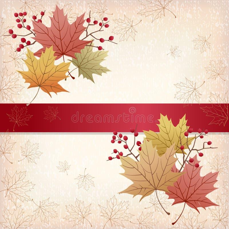 秋天槭树留给背景难看的东西纹理 皇族释放例证