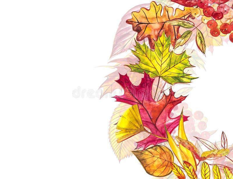 秋天模板背景 季节性例证 网横幅模板 额嘴装饰飞行例证图象其纸部分燕子水彩 皇族释放例证