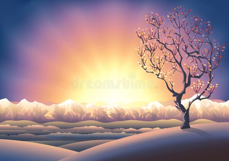 秋天横向日落结构树 库存例证