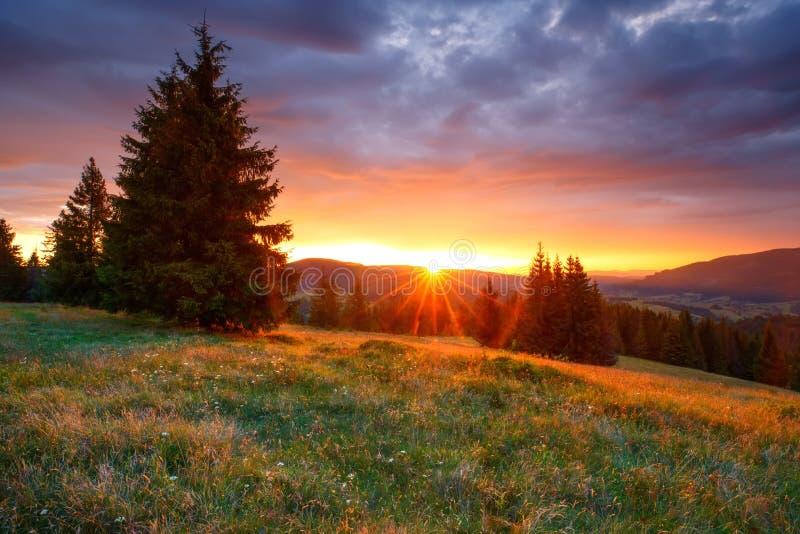 秋天横向 在山的五颜六色的日出 免版税图库摄影