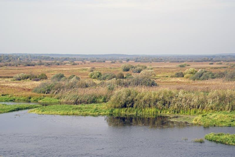秋天横向 洪泛区和河Berezina 晴天在10月 免版税图库摄影