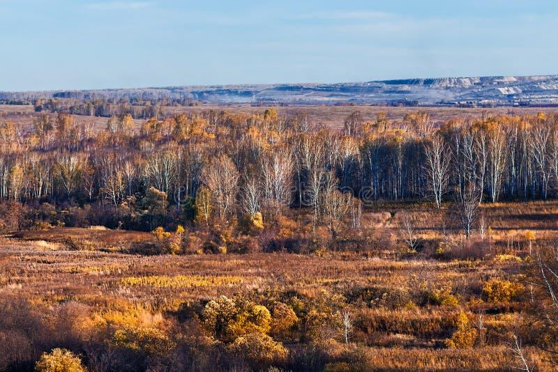 秋天横向 西西伯利亚,俄罗斯 免版税库存图片