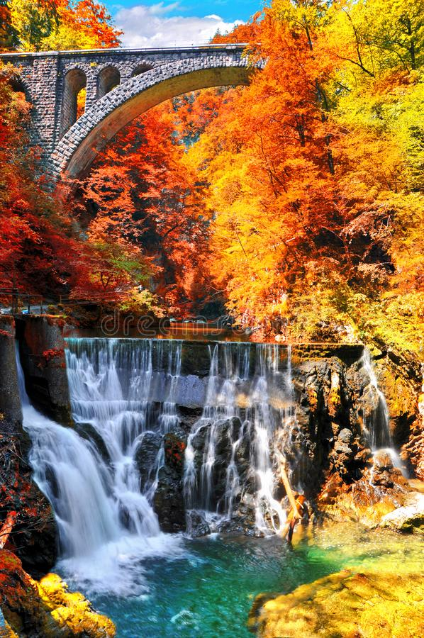 秋天横向 近著名Vintgar峡谷峡谷流血,特里格拉夫峰,斯洛文尼亚,欧洲 免版税库存照片
