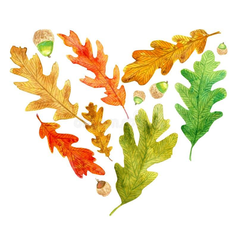 秋天橡木叶子和橡子在心形 向量例证