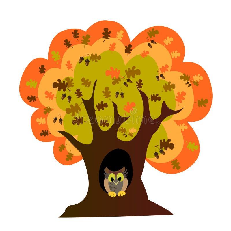 秋天橡木猫头鹰结构树 皇族释放例证