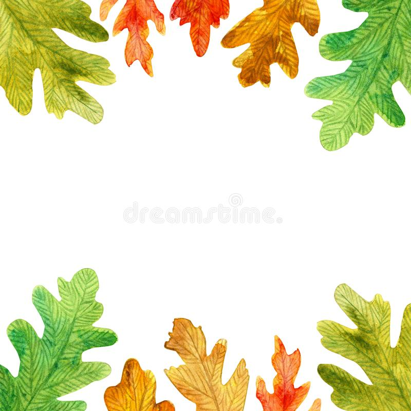 秋天水彩橡木离开方形的框架 皇族释放例证