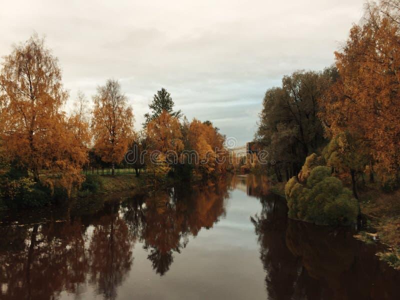秋天河在公园 免版税库存照片