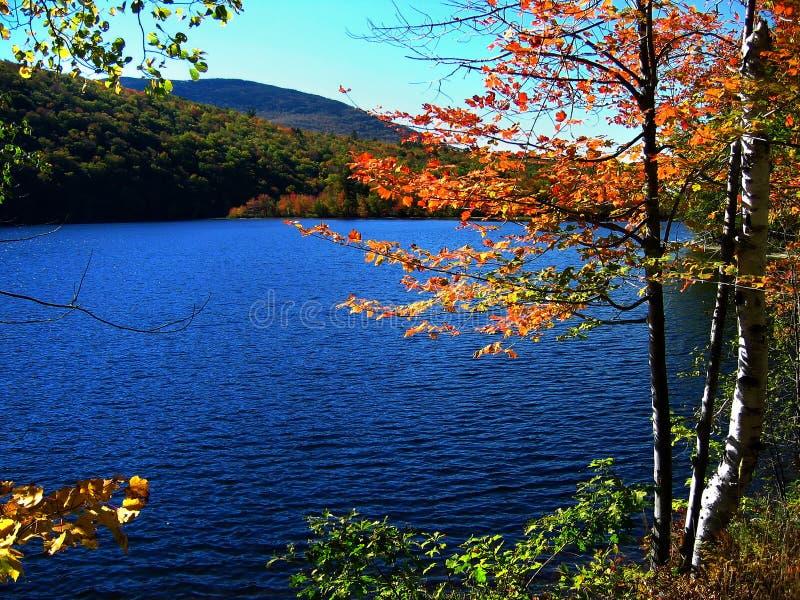秋天湖起了波纹 库存图片