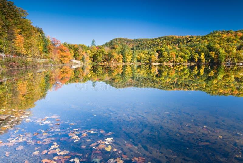 秋天湖边理想的风景 免版税库存照片
