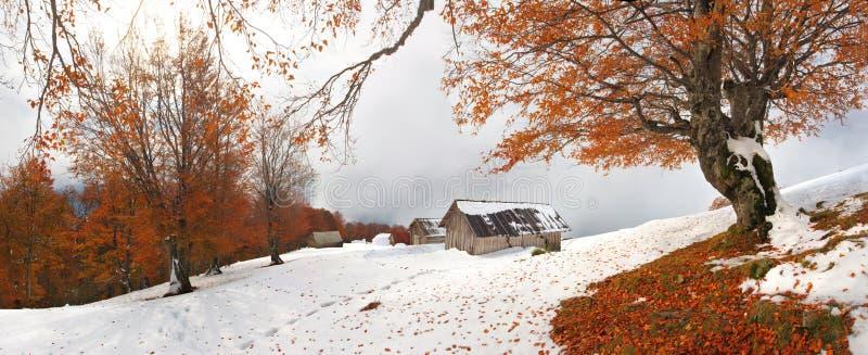 秋天满足其中冬天 库存图片