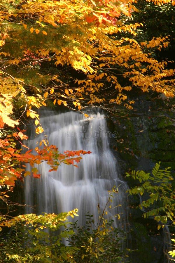 秋天瀑布 库存图片