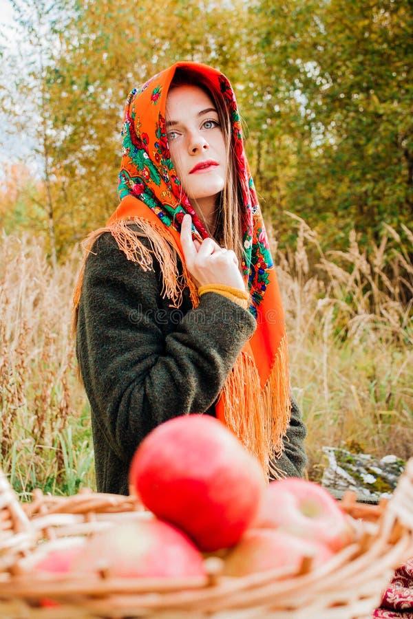 秋天画象,年轻美丽的女孩本质上与苹果一个柳条筐的  库存图片