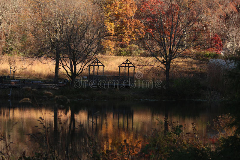 秋天的一个庭院 库存图片