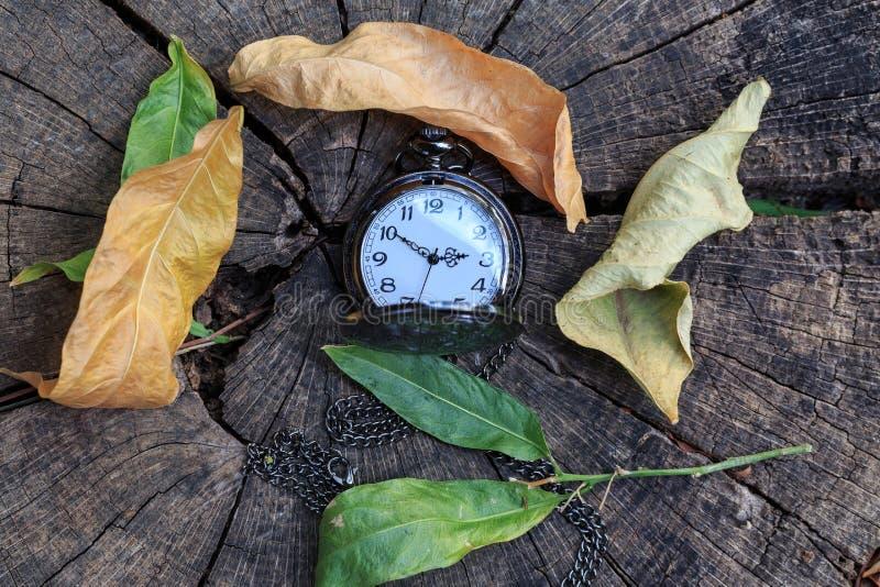 秋天的时刻:在木顶视图的怀表和褐色叶子 免版税库存照片