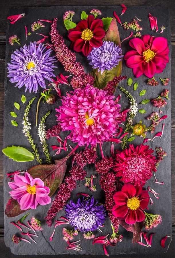秋天的构成开花与翠菊、大丽花、草本和叶子在黑暗的桌上 图库摄影