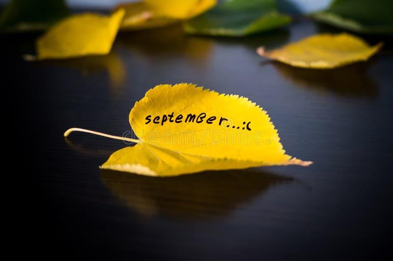 秋天的概念 免版税图库摄影
