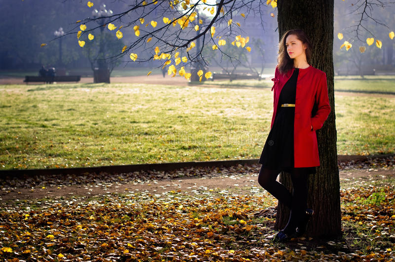 秋天的渴望 库存图片
