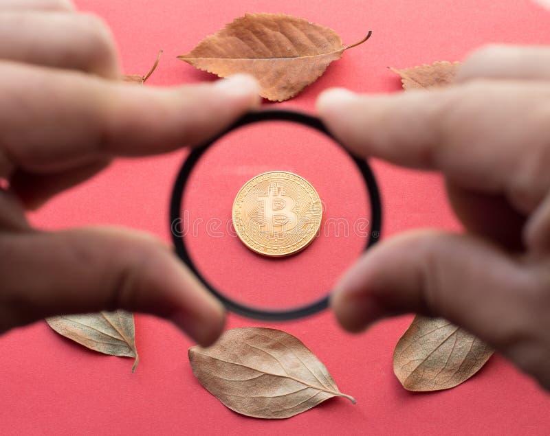 秋天的设计元素 人通过它在他的手上举行一块玻璃和看金黄Bitcoin和下落的叶子 免版税库存图片